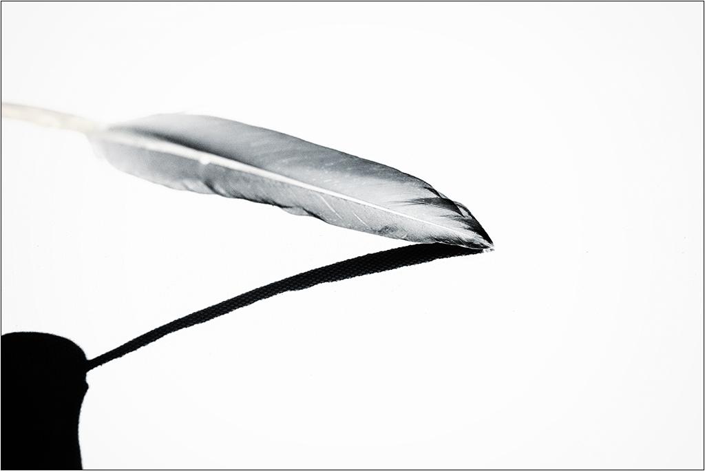 [Noir et Blanc] La plume + V2  Img_1910