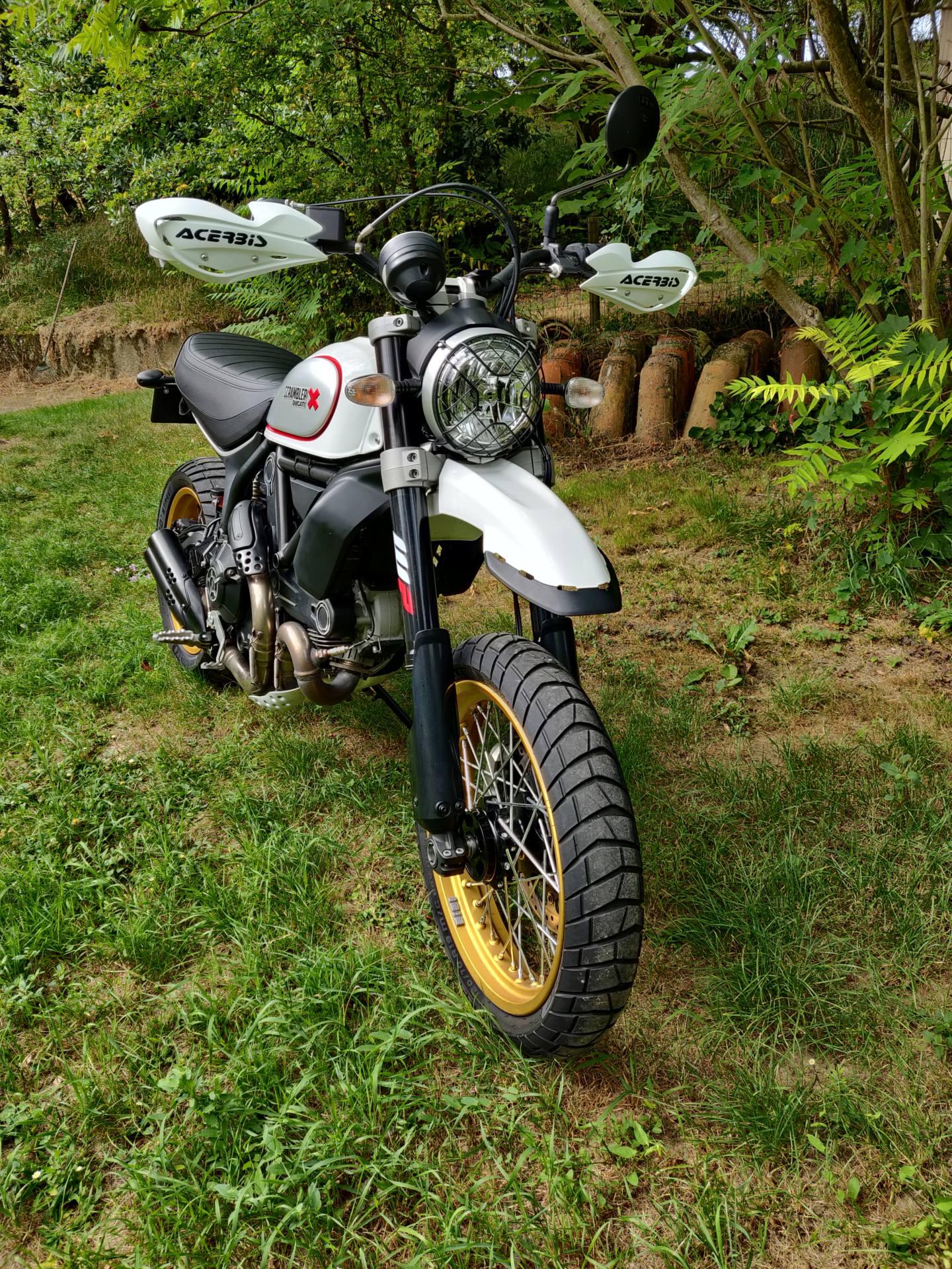 [ vendue ] Ducati scrambler Desert Sled Img_2013