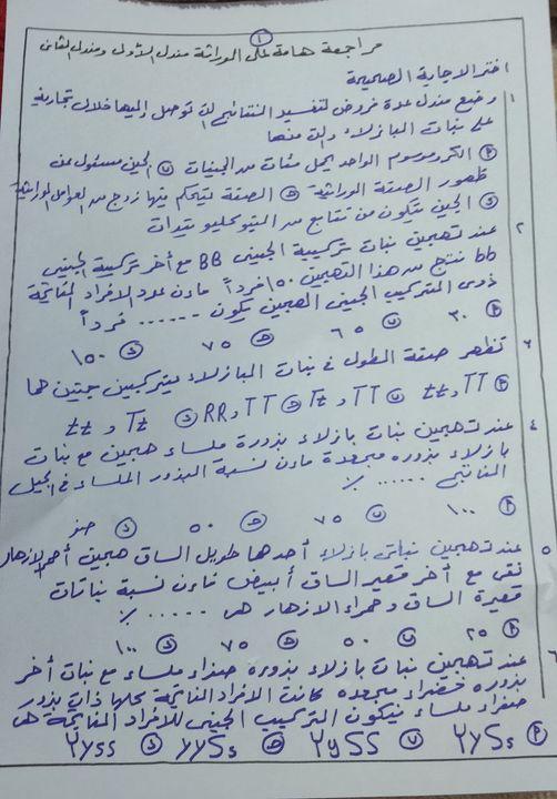 مراجعة هامة على الوراثة لثالثة ثانوي.. مندل الاول ومندل الثاني 21101