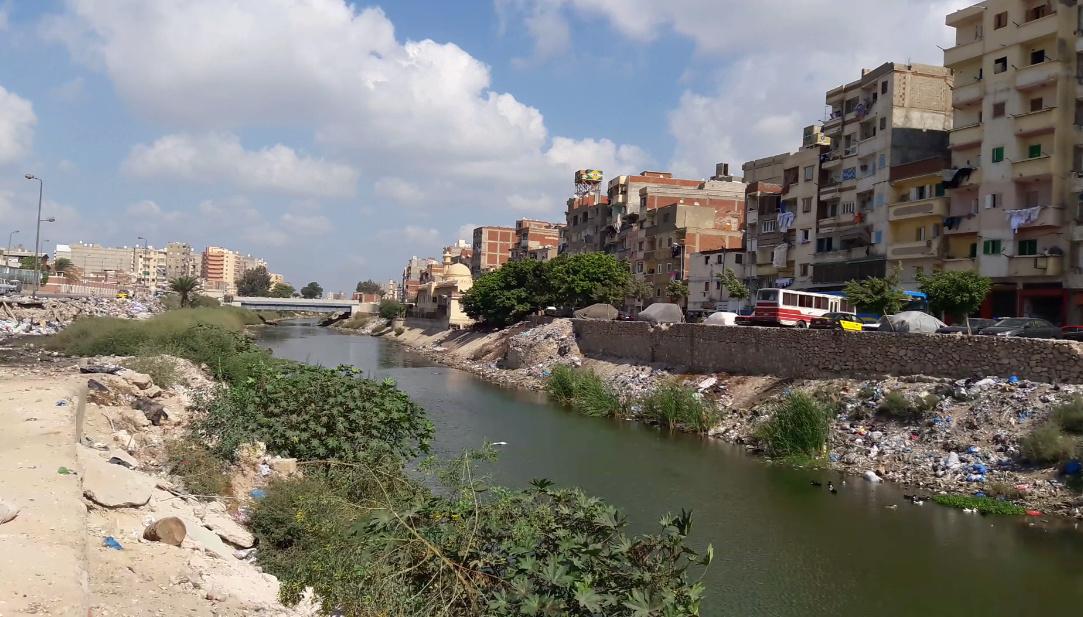 مشروع تطوير محور المحمودية بالإسكندرية بالصور 15491610