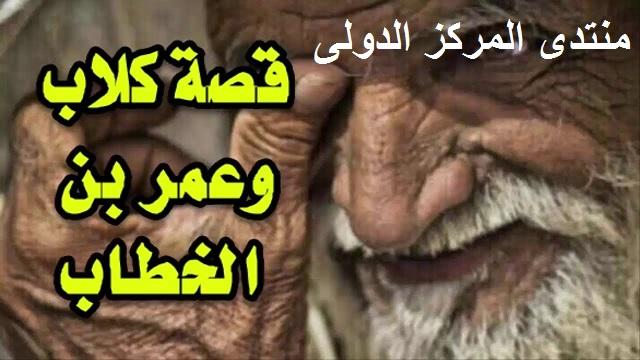 قصة كلاب ابن امية مع خليفة رسول الله 49253410