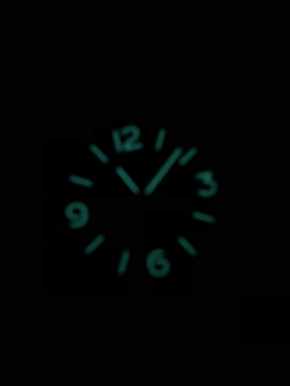 Une montre pour survivre Img_2414