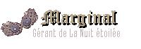 Sorcier en marge - Gérante de La Nuit étoilée, boutique de l'allée des Embrumes
