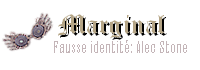 Sorcier en marge - Criminel sous une fausse identité: Alec Stone - Couverture: Archiviste