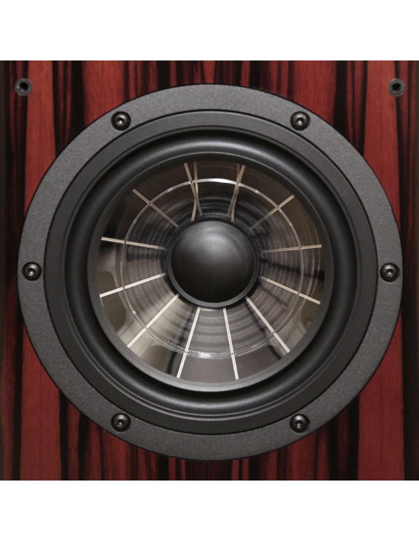 Vienna acoustics THE MUSIC - Página 2 The-pr12