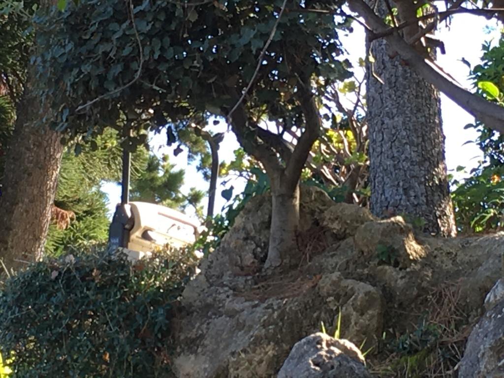 Batallitas de abuelete Img_4410