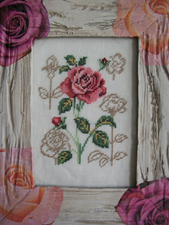 Une nouvelle Rose de Véronique Enginger Roses10