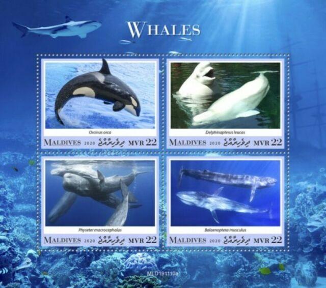 ● Briefmarken-Kalender 2021 - Seite 9 S-l64010