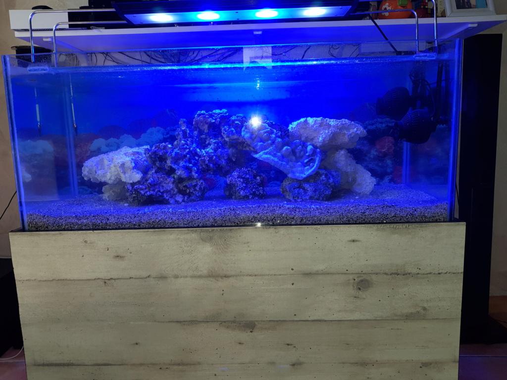 Aquarium 250L 20180811