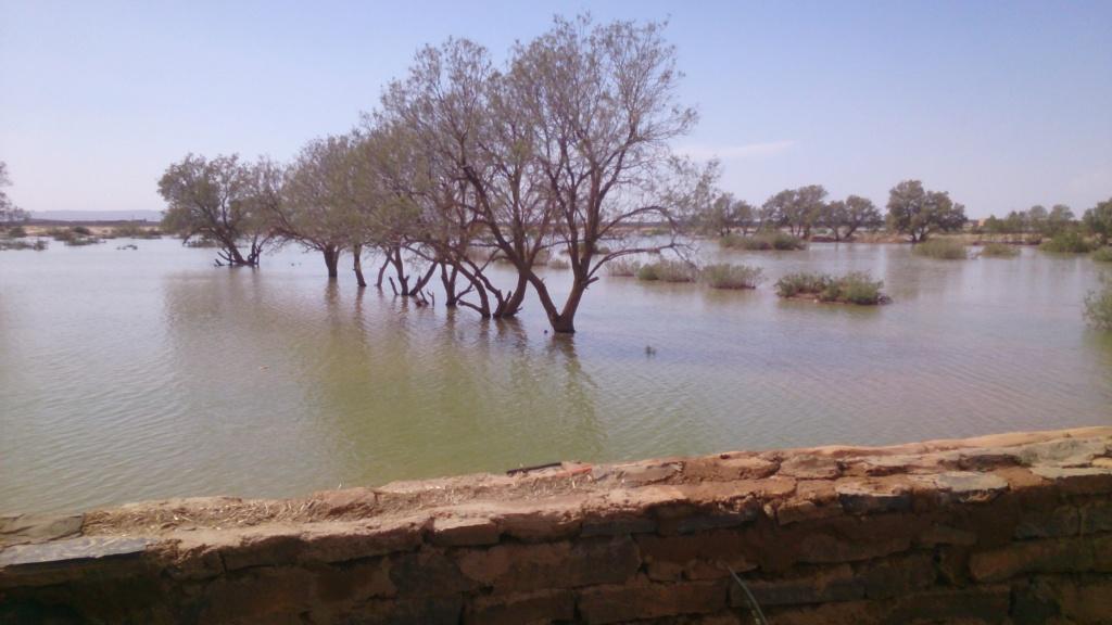 [Maroc Camp/Dernières nouvelles] Merzouga sous l'eau Dsc_0011