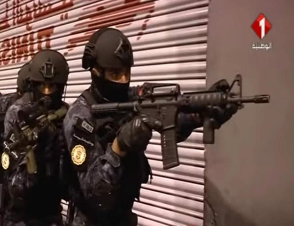 Armée Tunisienne / Tunisian Armed Forces / القوات المسلحة التونسية - Page 23 12987510