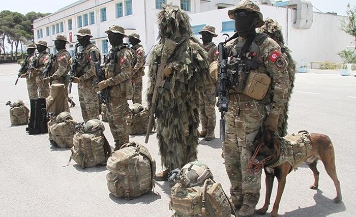 Armée Tunisienne / Tunisian Armed Forces / القوات المسلحة التونسية - Page 17 15613910