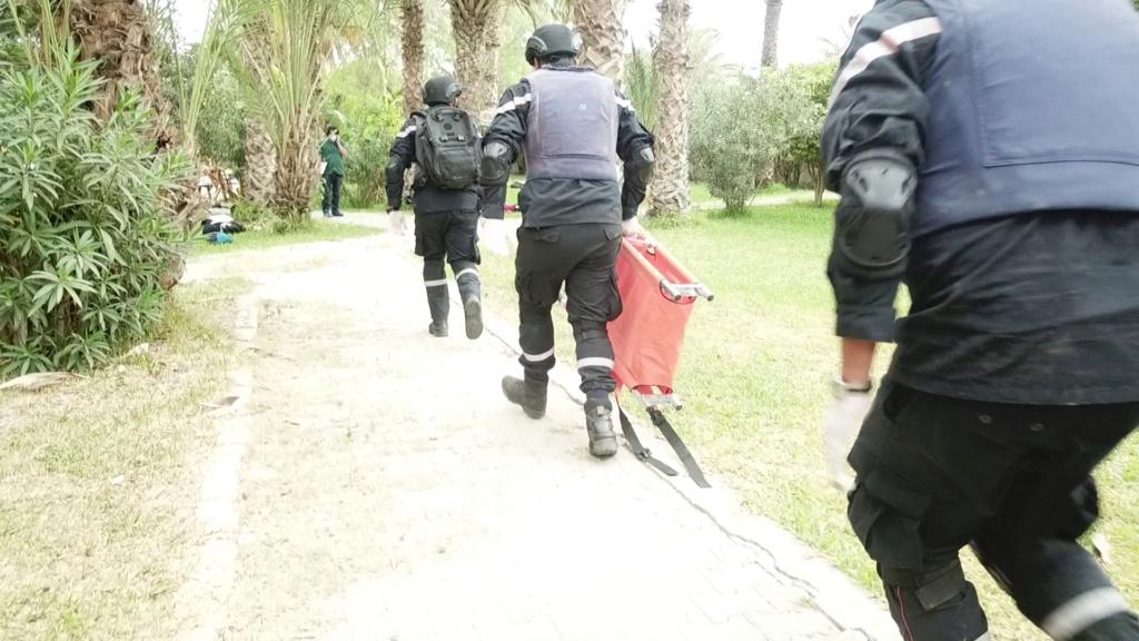 Armée Tunisienne / Tunisian Armed Forces / القوات المسلحة التونسية - Page 39 24282410
