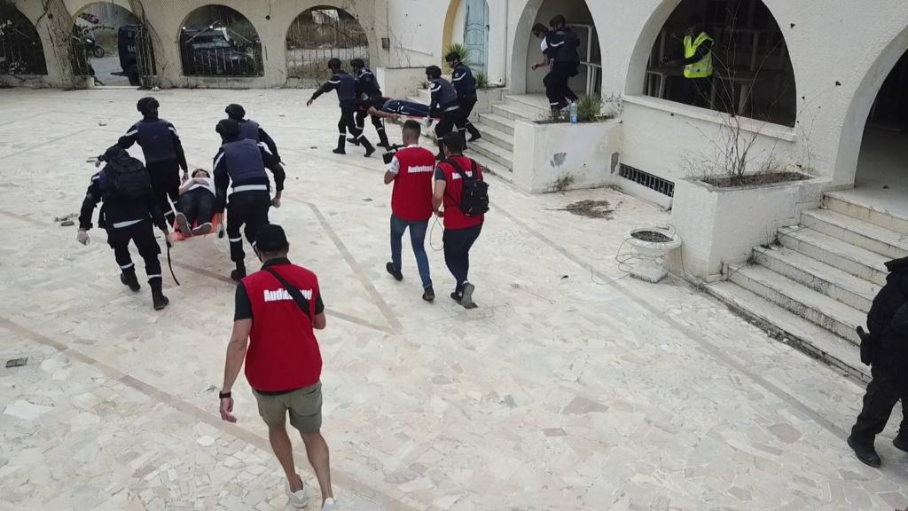 Armée Tunisienne / Tunisian Armed Forces / القوات المسلحة التونسية - Page 39 24286010