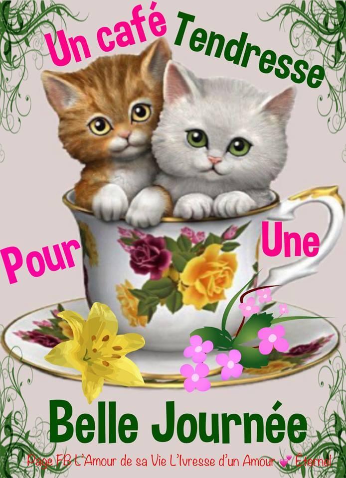 Salut,bonjour,bonsoir,bonne nuit, a bientôt... - Page 38 Panier12