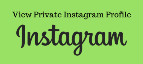 Best Working App To Instagram private Profile Viewer In 2019