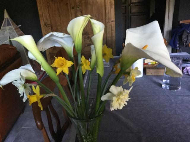 beau bouquet - Page 5 98435a10