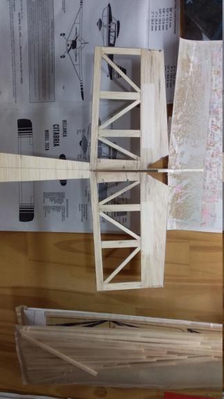 randy randolph bee tween build Img-2061