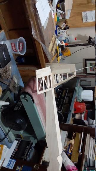 randy randolph bee tween build Img-2062