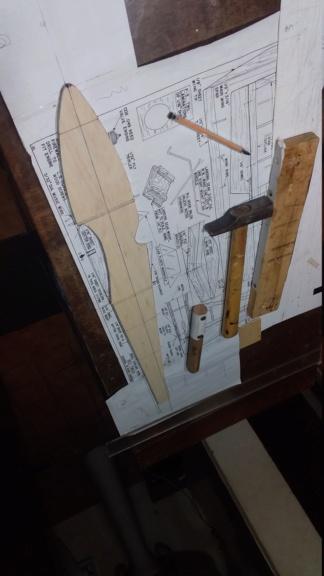 randy randolph bee tween build Img-2075