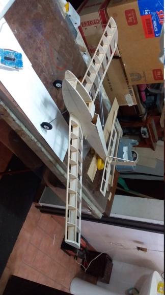 randy randolph bee tween build Img-2083