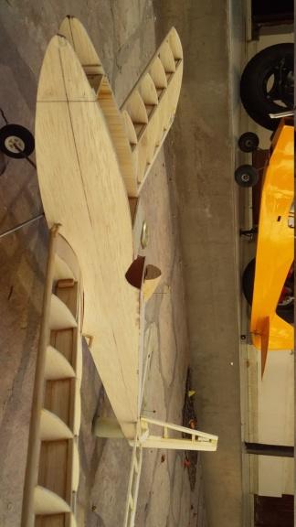 randy randolph bee tween build Img-2086