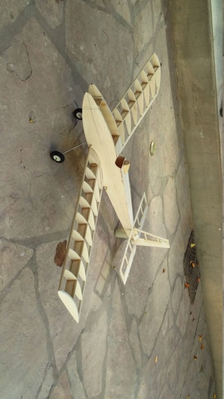 randy randolph bee tween build Img-2087