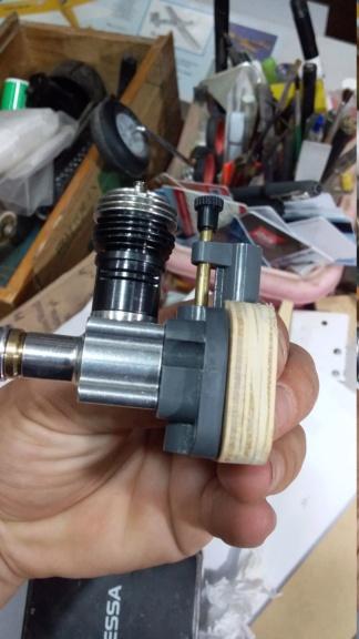 randy randolph bee tween build Img-2089