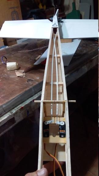 randy randolph bee tween build Img-2098