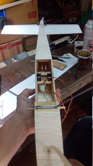 randy randolph bee tween build Img-2099