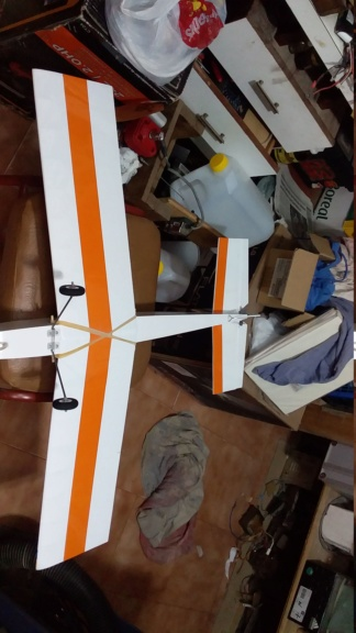 randy randolph bee tween build Img-2100