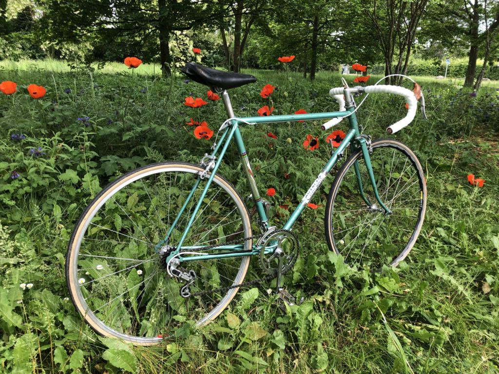 Chaplait - Vainqueur du Tour Img_0716