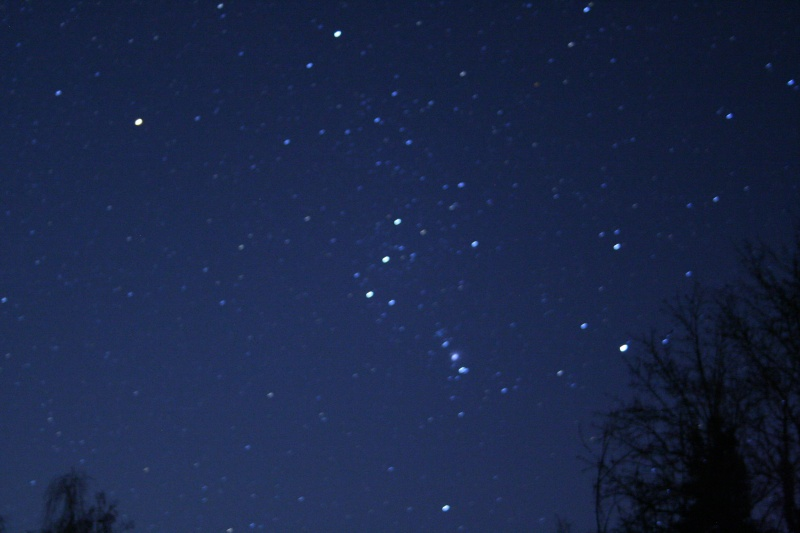 Orion by a noob Photos11