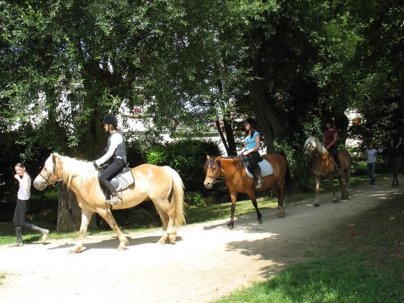 cheval ou poney? 13_jui15