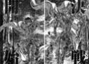 [Manga] Saint seiya Episode G + Assassin - Page 3 Ep_g0817