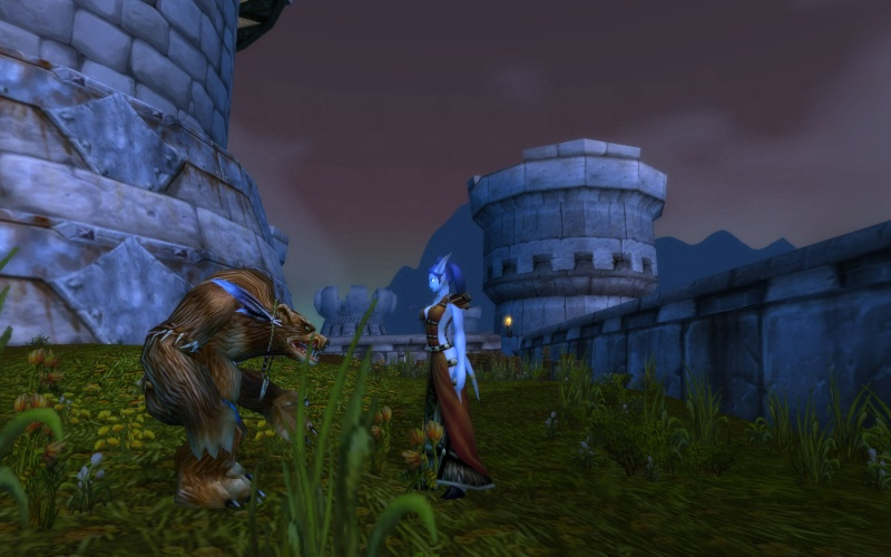 Whitestar Snapshots book (WOW RP screenshots) Wowscr16