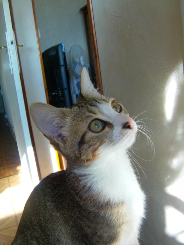 Tatiana (rebaptisée Miya) Imag0012
