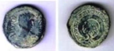 Semis de Cartagonova (por Augusto) Presen10