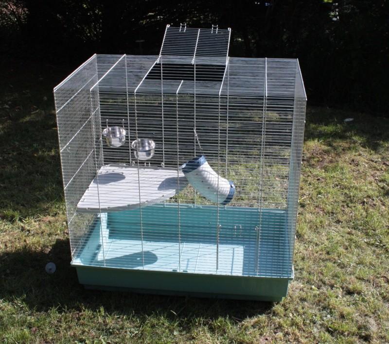 Vend cage Jenny + quelques accessoires Img_3810