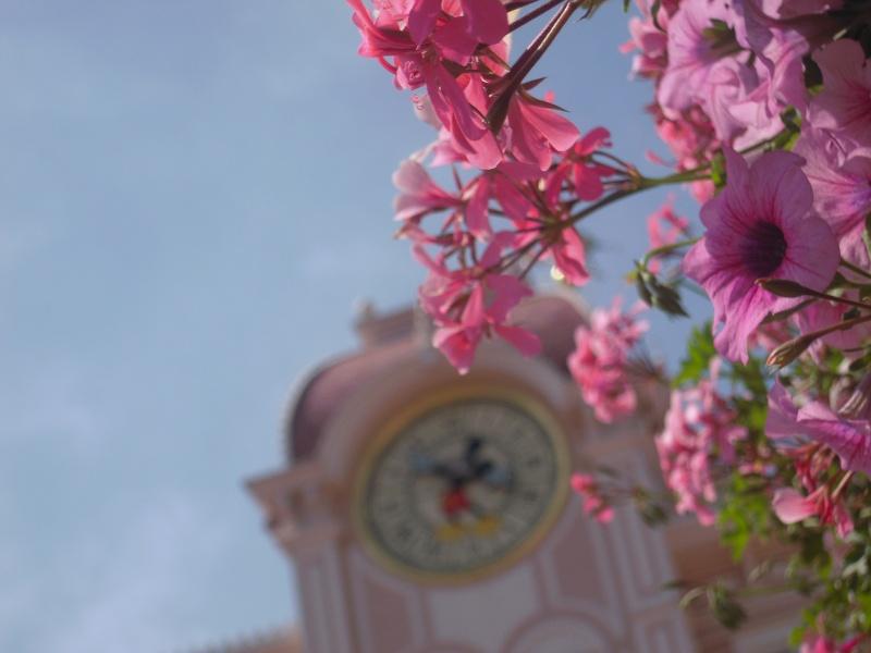 Les photos gagnantes du concours photo 2011-2012 Dscn5110