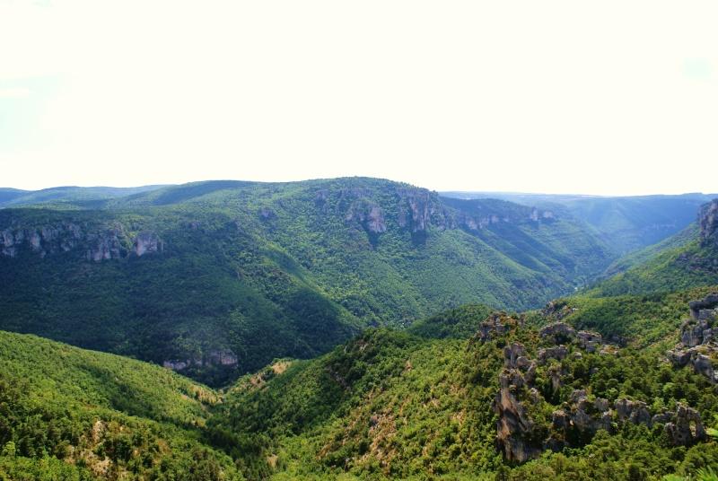 Les Gorges du Tarn Dsc07010