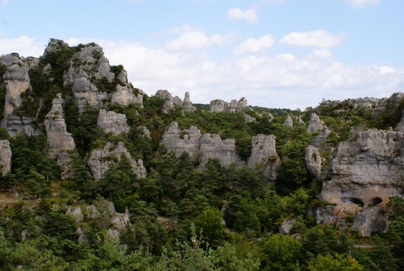 Les Gorges du Tarn Dsc07012