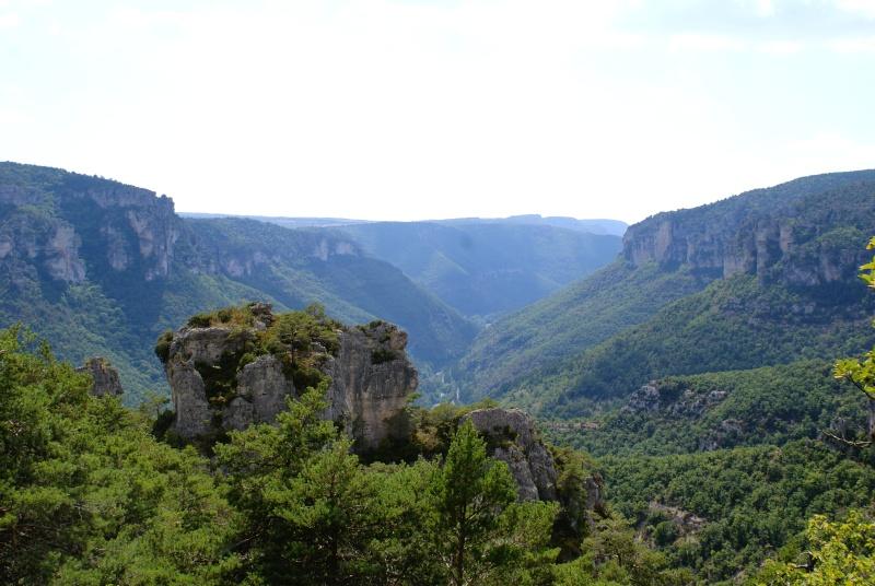 Les Gorges du Tarn Dsc07013