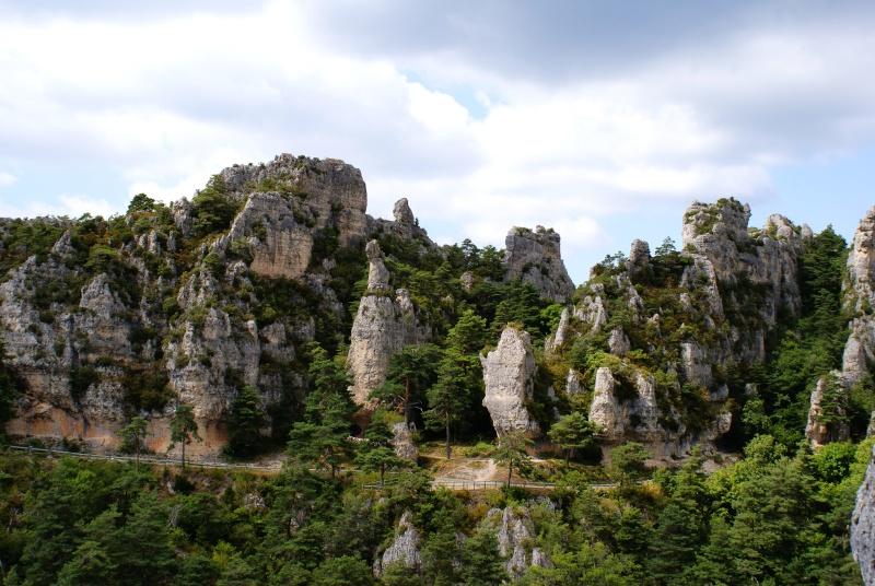 Les Gorges du Tarn Dsc07014