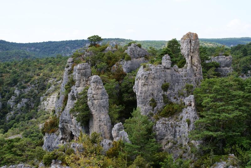 Les Gorges du Tarn Dsc07017