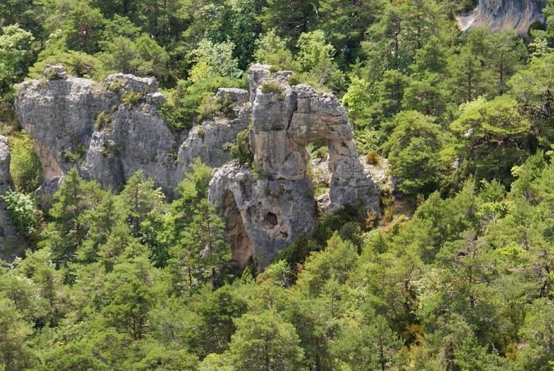 Les Gorges du Tarn Dsc07018