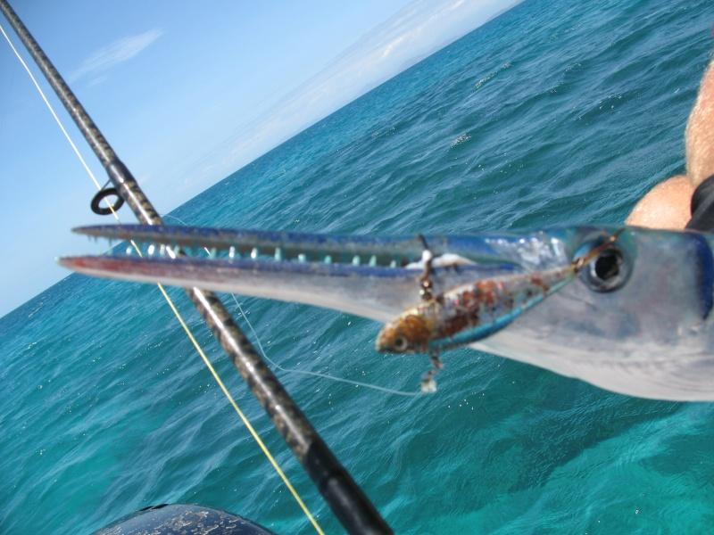 Ma pêche lagonnaire en décembre en nouvelle calédonie Img_2511
