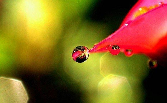 صور: نقطة الماء Funlok17