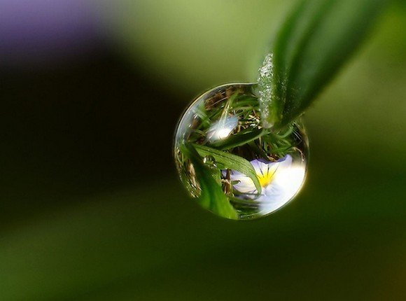 صور: نقطة الماء Funlok19