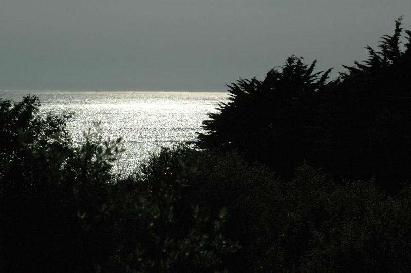 La mer, qu'on voit briller [...] a des reflets d'argent... Dsc_8312